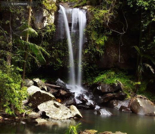 CURTIS FALLS - Mount Tamborine - Mount tamborine Gold coast - Curtis falls queensland