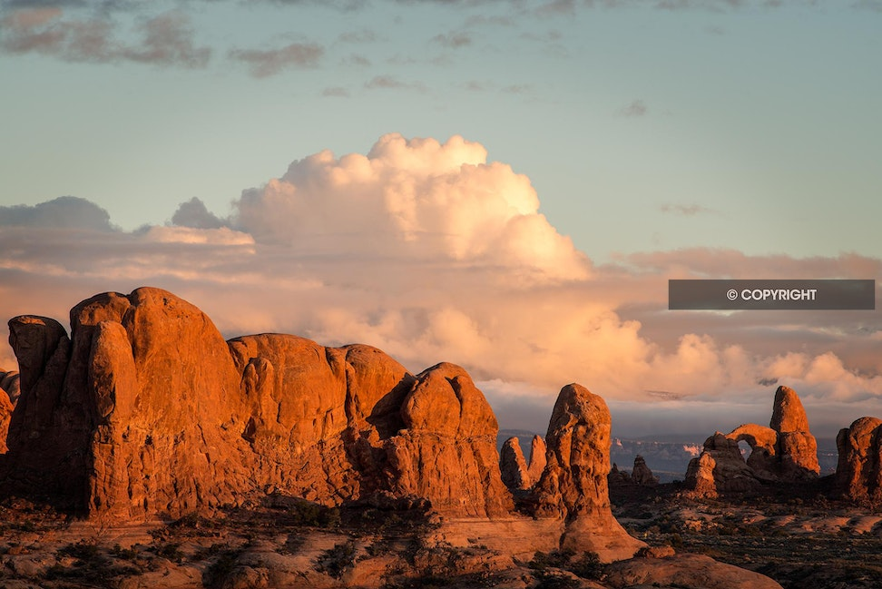 March of the Elephants - Arches National Park,  UT