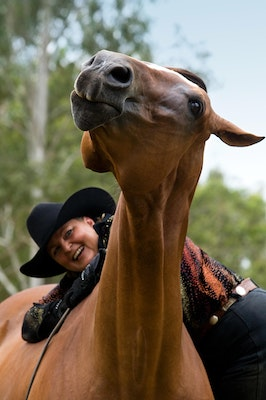 Funny Horse Portrait QLD_6015 - Horse and Owner have a fun moment while Luke the Quarter Horse enjoys a scratch