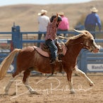 Merrijig APRA Rodeo 2017 - Junior Slack Program