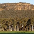 CLIENT: WILD MAGAZINE - Australian Landscape for Content