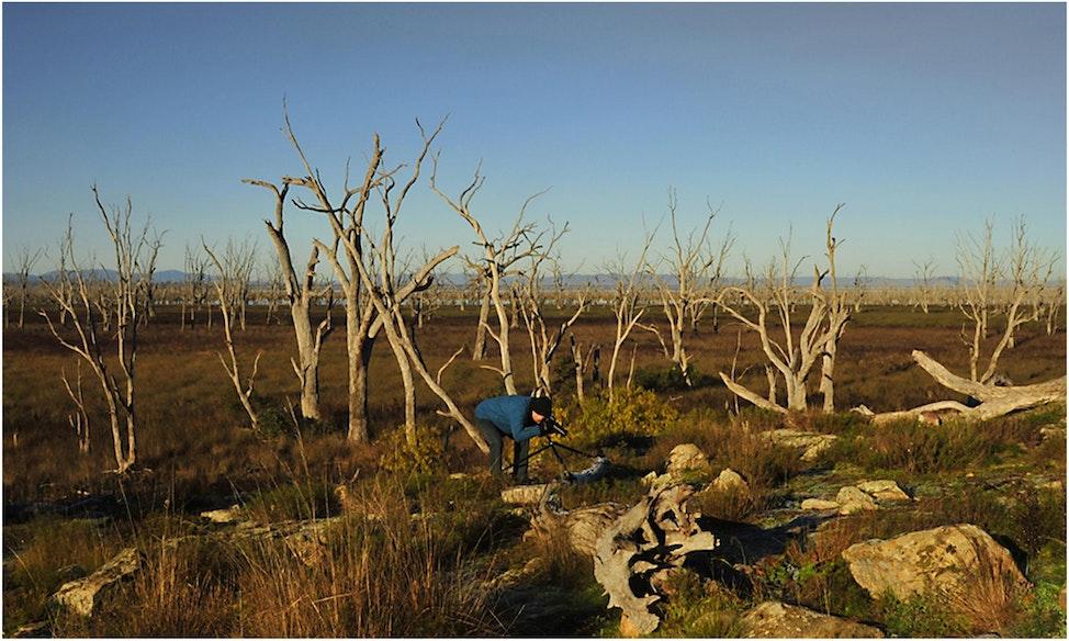 Ian-Mokoan Wetlands01