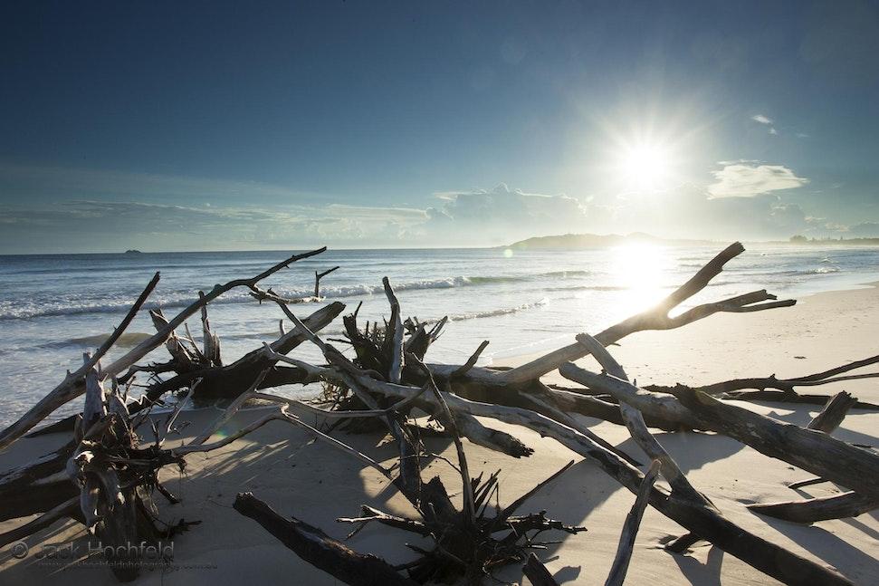 Uprooted trees, Belongil beach, Byron Bay - Uprooted trees, Belongil beach, Byron Bay