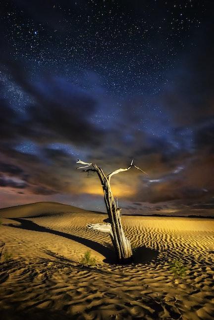 Ethereal Desert