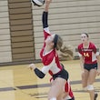 2013-14 Andrean Volleyball (Girls' Varsity)