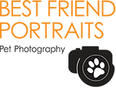 Best Friend Portraits Pet Photography - Cam Scott Melbourne Pet Photographer