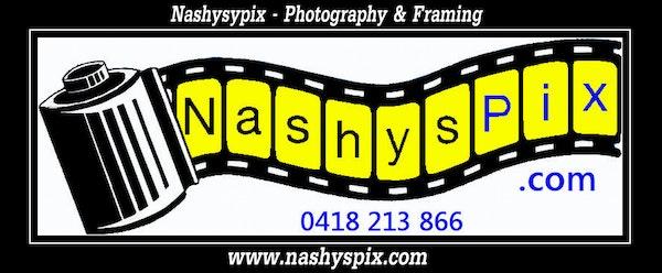 NashysPix Logo Small