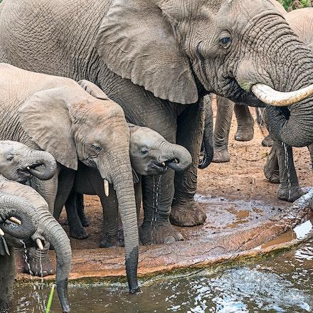 021 Thanda Safari Lodge 030515-8225-Edit