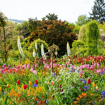 134 - Giverny - 260417-4458-Edit - Monets Garden