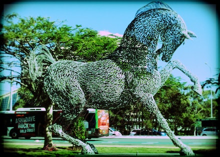 Park Horse 11 - Welded metal horse sculpture in a park at the Gold Coast, Queensland, Australia
