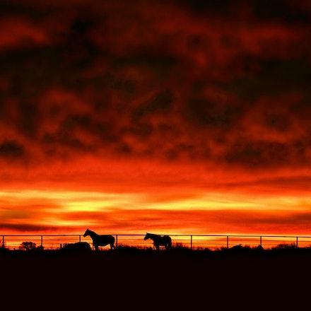 Fiery Pasture   1.25.2015.1 - Fiery Pasture. Storm clouds moving out reveal a vibrant sunrise in Lancaster County, Nebraska. Hickman, NE #nebraska #pasture...